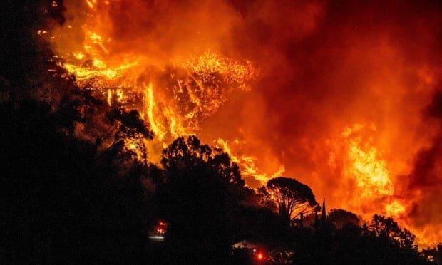 خطرات حریق های جنگلی برای زمین و بشر