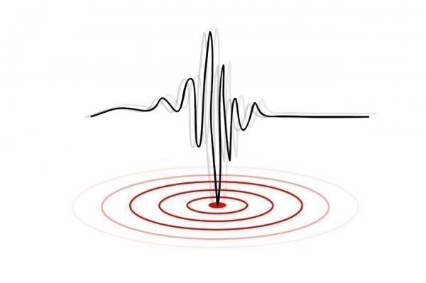 زلزله 6.5 ریشتری جنوب اقیانوس آرام را لرزاند