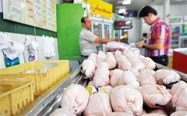 قیمت مرغ ارزان می گردد؟