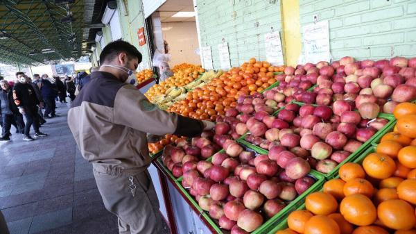 پیله دلالان برای بالا بودن قیمت میوه و تره بار